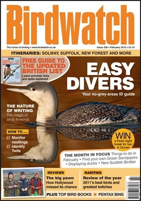 Cover Feb 2012 - Red-throated Diver - Netherlands