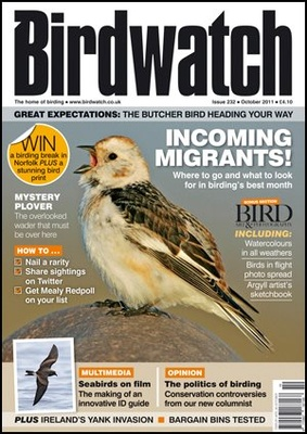 Cover Oct 2011 - Snow Bunting - Iceland