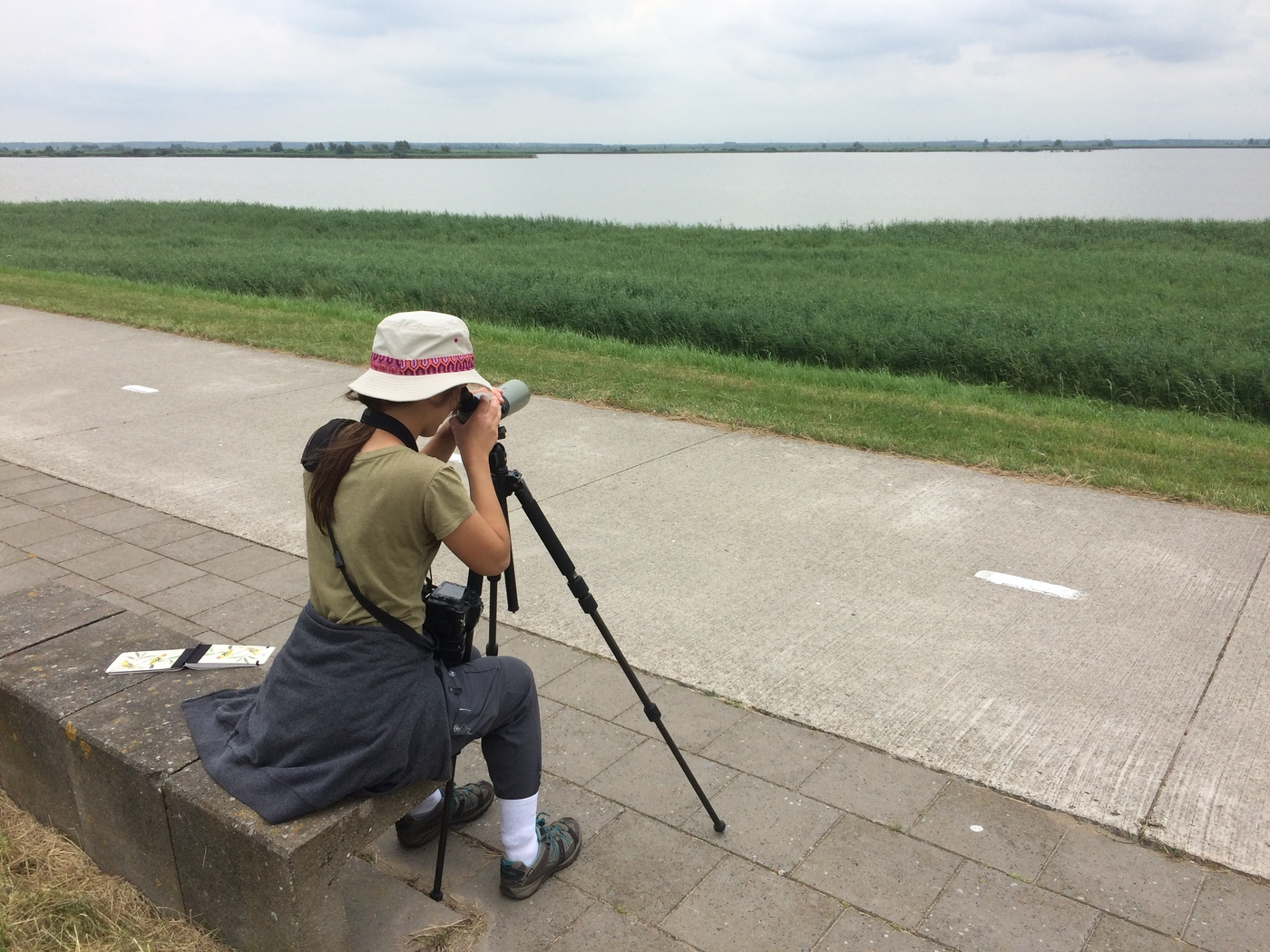 20180619 Full Day Oostvaardersplassen